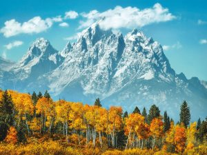 Grand Teton in fall – 500 piezas – Clementoni – High Quality Collection Ref 35034